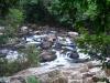 Малайзия. Национальный парк Таман Негара (1)
